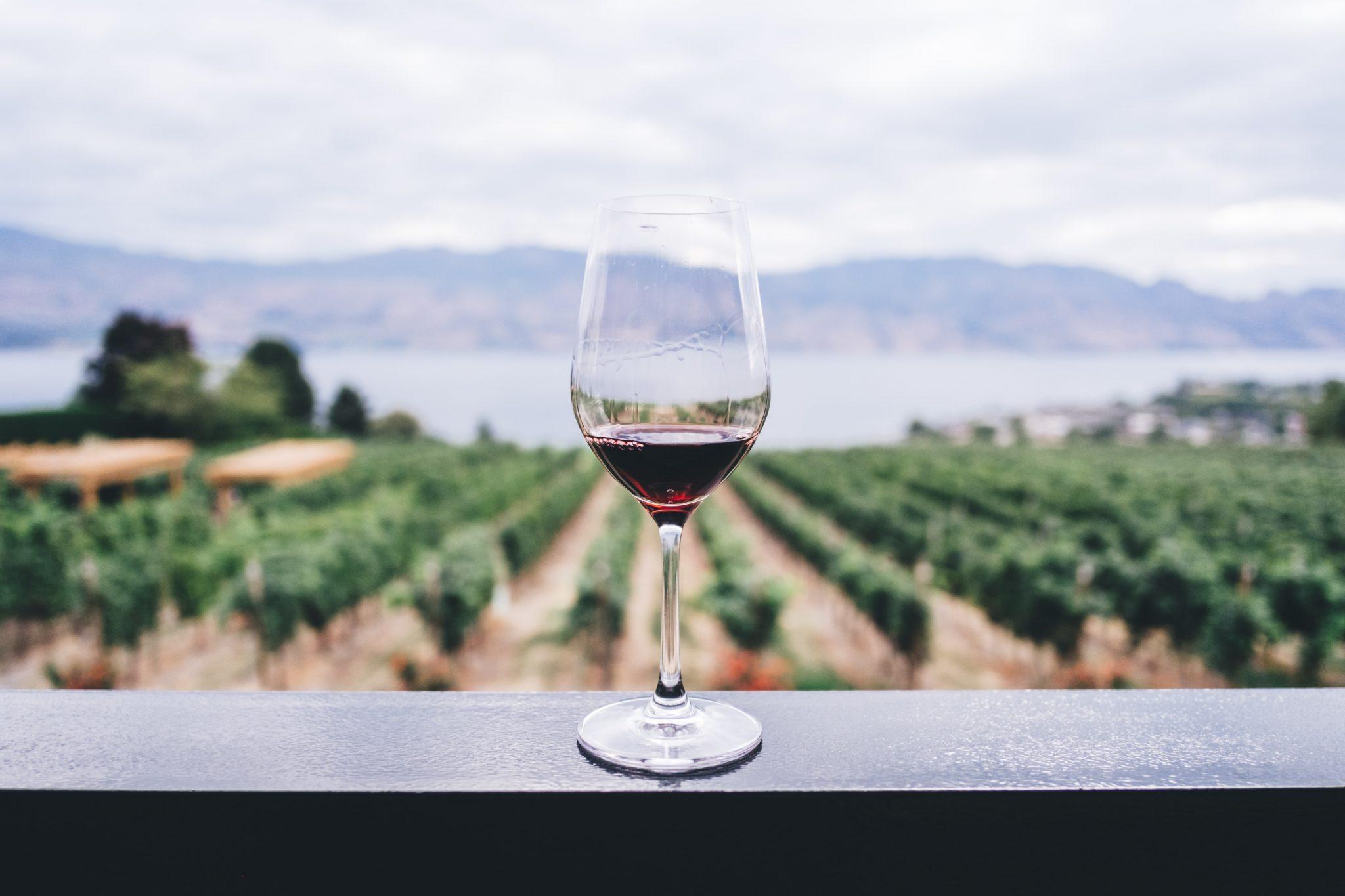 Linee guida sul consumo di alcol